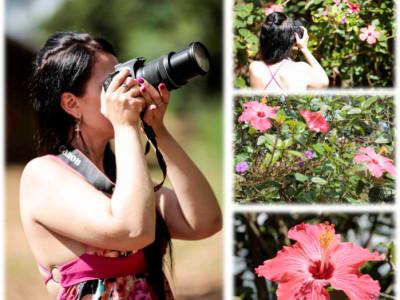 FotoJornalismo Artístico